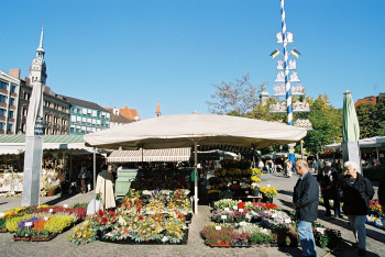 Der Viktualienmarkt ist eine echte Institution in München.