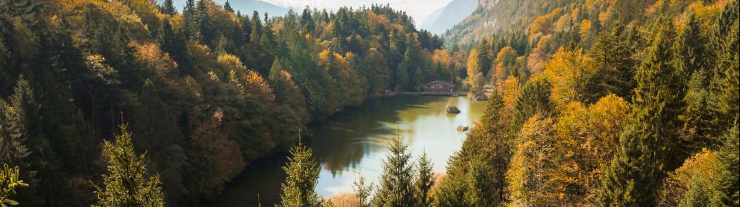 Am gut versteckten Berglsteiner See zeigt sich der Herbst von seiner buntesten Seite.