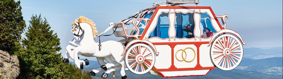 Mit weißer Kutsche zum Gipfel der Gefühle gehts für Brautpaare am Arber.
