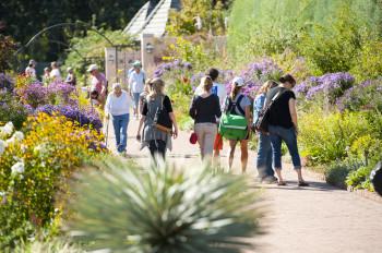 Jährlich genießen mehr zigtausende Besucher die Vielfalt an Pflanzenarten im Botanischen Garten in Denver.