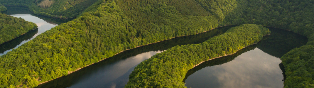 In der Eifel erwarten dich herrliche Landschaften mit unberührter Natur.
