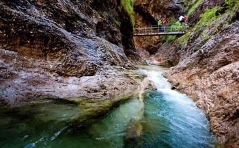 Glasklar fließt das Wasser durch die Almbachklamm.