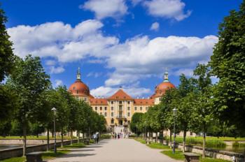 Entlang einer idyllischen Allee wanderst du bis zum Eingangsportal des Barockschloss Moritzburg