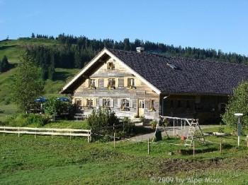 Alpe Moos Bregenzerwald