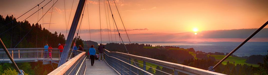 Die Hängebrückenkonstruktion des Skywalk Allgäu bietet eine einmalige Sicht auf den Bodensee