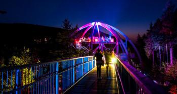 Stimmungsvolle Beleuchtung beim 'Wipfelleuchten' am Baumwipfelpfad Harz