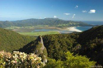 Die traumhafte Natur rund um Auckland