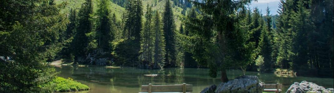 Das Salzburger Land überzeugt mit seiner vielfältigen Landschaft