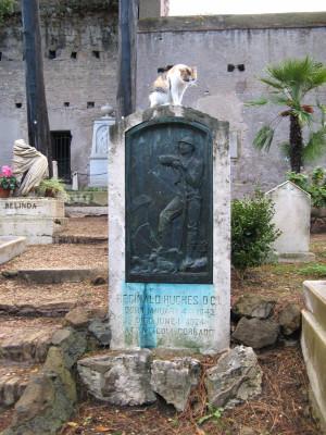 Der Protestantische Friedhof in Rom hat auch einige lebende Bewohner
