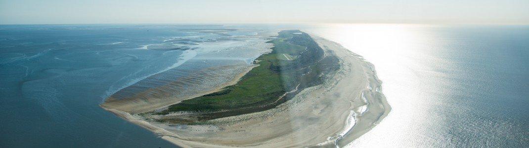 Einen 17 Kilometer langen Sandstrand bietet die nur 500 Meter breite Insel Juist.