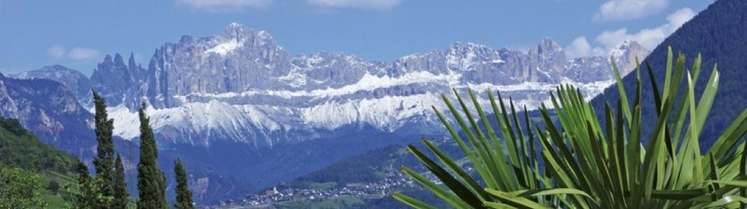 Zwischen Alpen und Zypressen