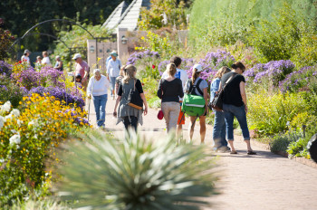 People enjoying the variety of flowers at Denver Botanic Gardens