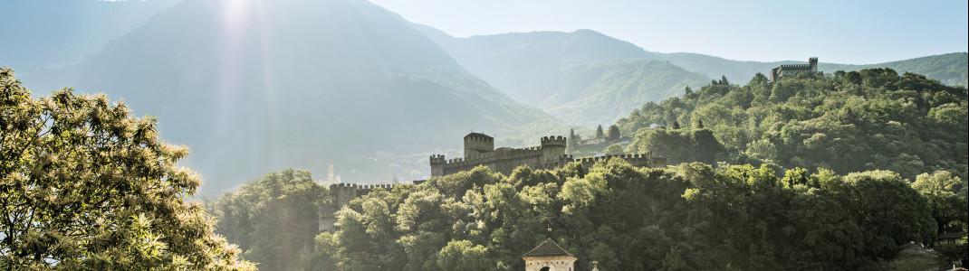 Majestätisch erheben sich die drei Burgen über Bellinzona.