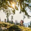 Vorbei an idyllischen Almen und Wäldern - das ist Radfahren im Chiemgau