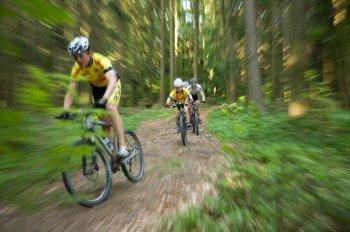 Mountainbiker im Bayerischen Wald, Landkreis: Freyung-Grafenau