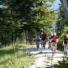 Auf einer Radtour durch die Natur bekommt man den Kopf frei