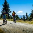 Bike Trail From Zell am Ziller to the Hirschbichlalm