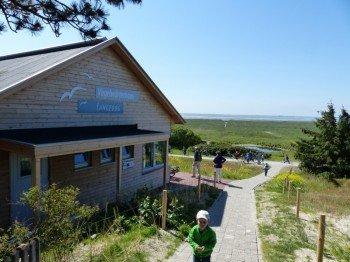 Blick vom Vogelwärterhaus Langeoog Richtung Süden