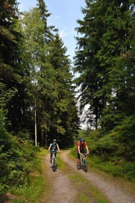 The trail consists of 5km/3.1mi of forest roads.