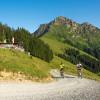 Der Trail verläuft von der Mittelstation Harschbichlbahn bis hinunter zur Talstation.