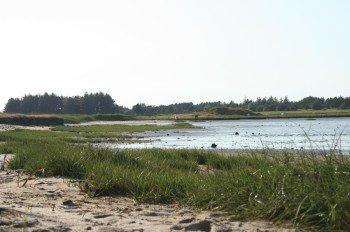 Die Radtour führt dich durch die Dünen- und Heidelandschaften auf Rømø
