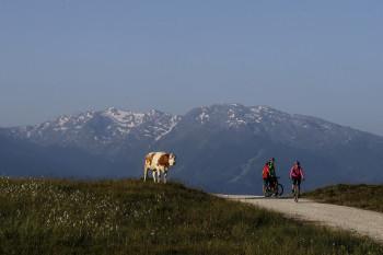 Ausblick Tuxer Alpen