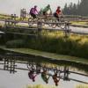 Teich Walderalm