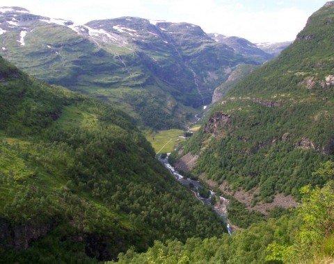 Das grüne Flåm Tal