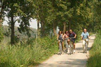 Der Römerradweg führt von Passau nach Enns und durchquert herrliche Landschaften.