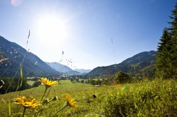 Blick auf Bayrischzell am Tannerfeld