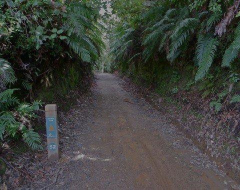 Wegweiser am Timber Trail