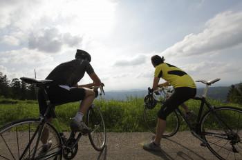 Nicht nur zur Spargelzeit ist die circa 108 Kilometer lange Tour de Spargel ein Highlight für Radfahrer.