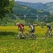Biking along bridge Sunniberg