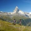 Stets das Matterhorn im Blick