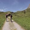 Weg vom Hochtannbergpass in Richtung Jägeralpe