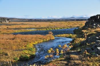 The oasis near Herðubreiðarlindir