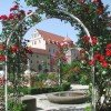 Rose garde of the palace in Amberg