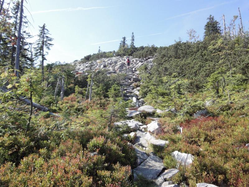 Hike Finsterauer Lusensteig Lusen Bavarian Forest