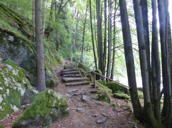 These few stairs are the only slight ascent of the route.