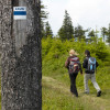 Kammweg hiking path takes you up Fichtelberg mountain.