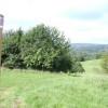 Green meadows along the way