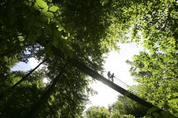 The pendant bridge near Kühhude is one of the highlights.