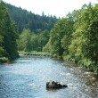 river Ilz