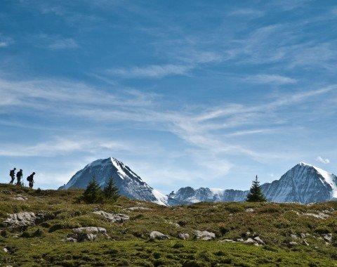 hiking the Jungfrau region
