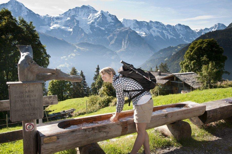 Hike Isenfluh panorama trail Sulssee • Interlaken • Map