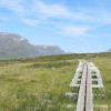 Due to the soggy ground, wooden planks are laid out in parts of Kungsleden.