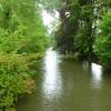 River Radolfzeller Aach in Singen