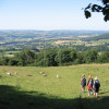 You will coem across sheep on numerous occasions as you follow Offa's Dyke Path.