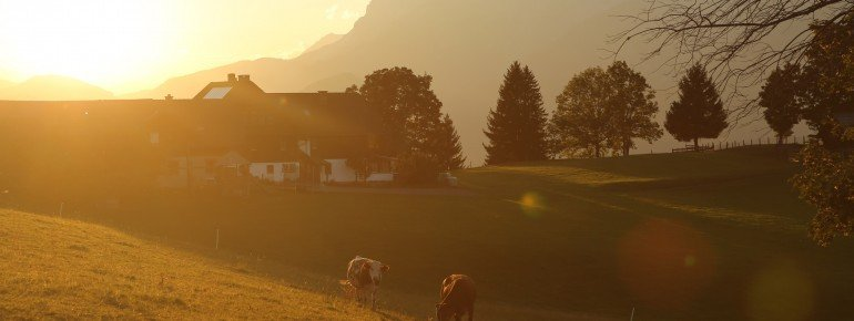 View across the pasture land around Hüttendorf Pruggern