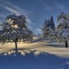 Oberstaufen - a winter wonderland